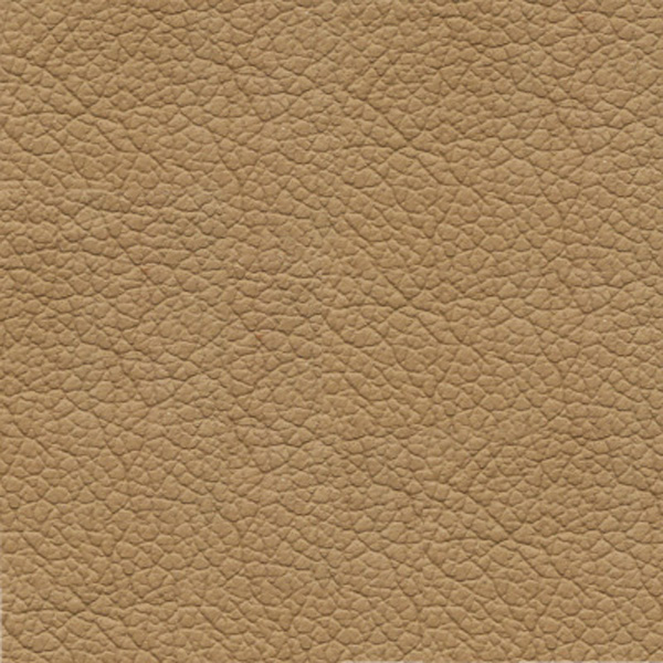 Leather - Tosca Tan